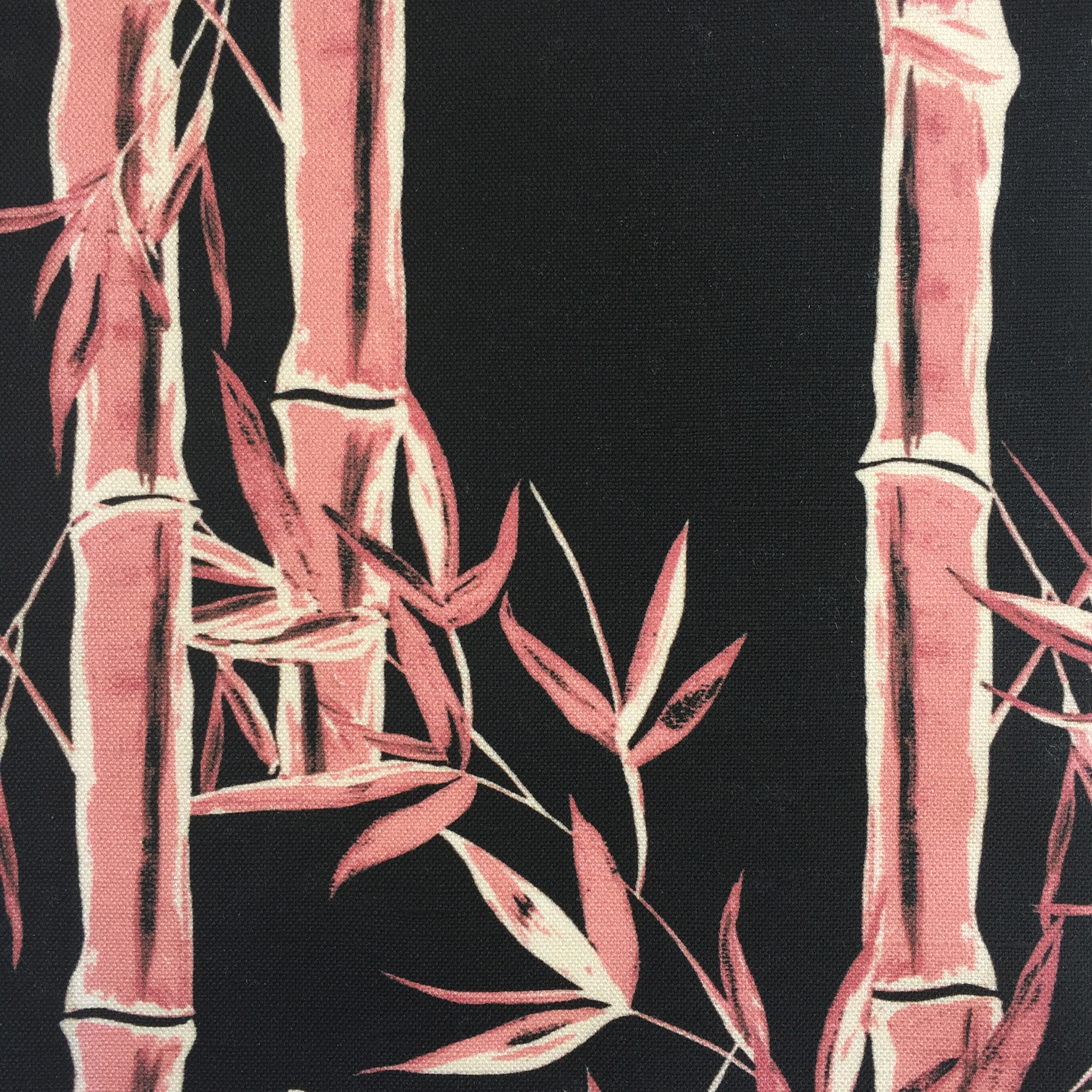 Bamboo in Black/ROSE  CHINOISERIE COLLECTION