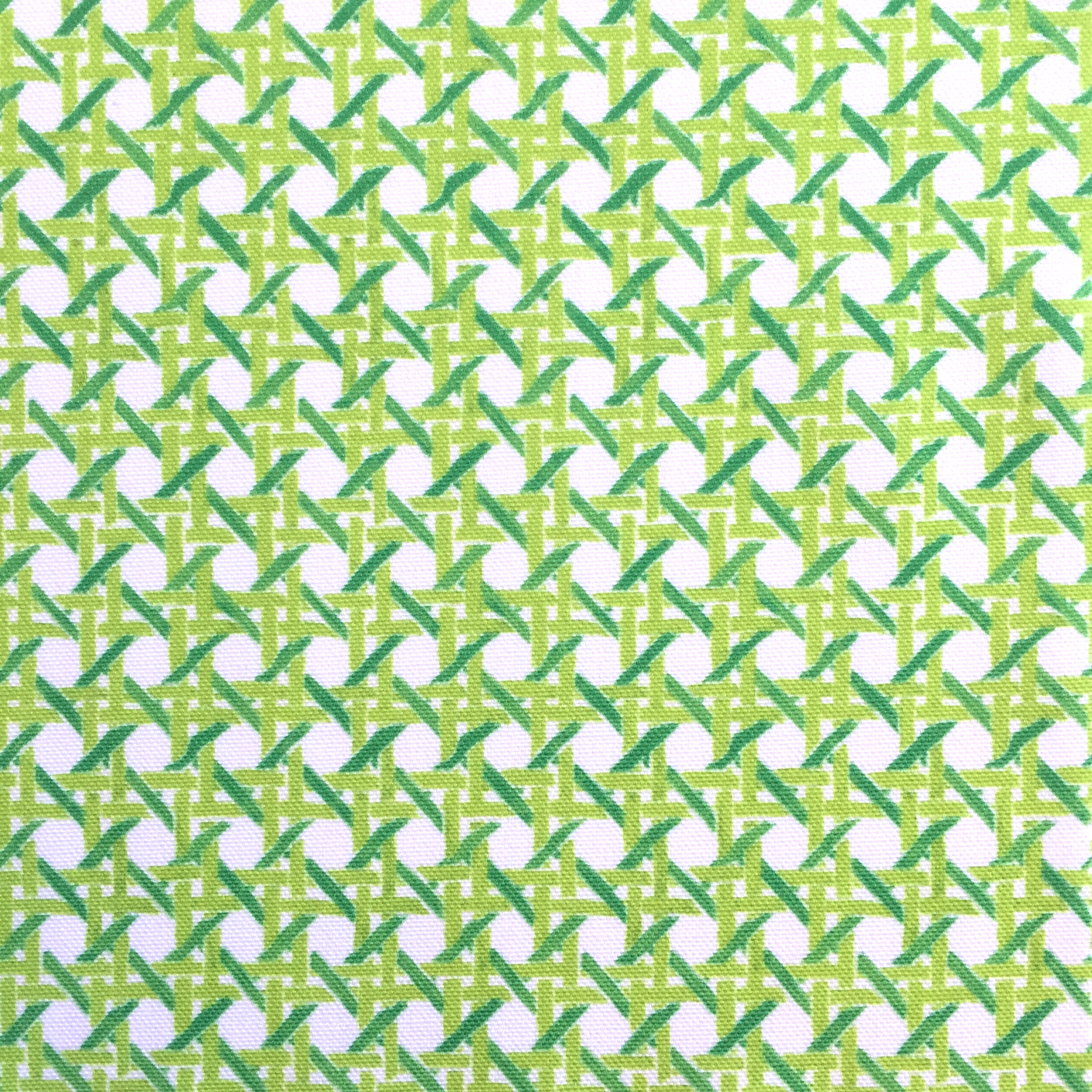 MINI Cane Print in Gimlet  PALM SPRINGS COLLECTION