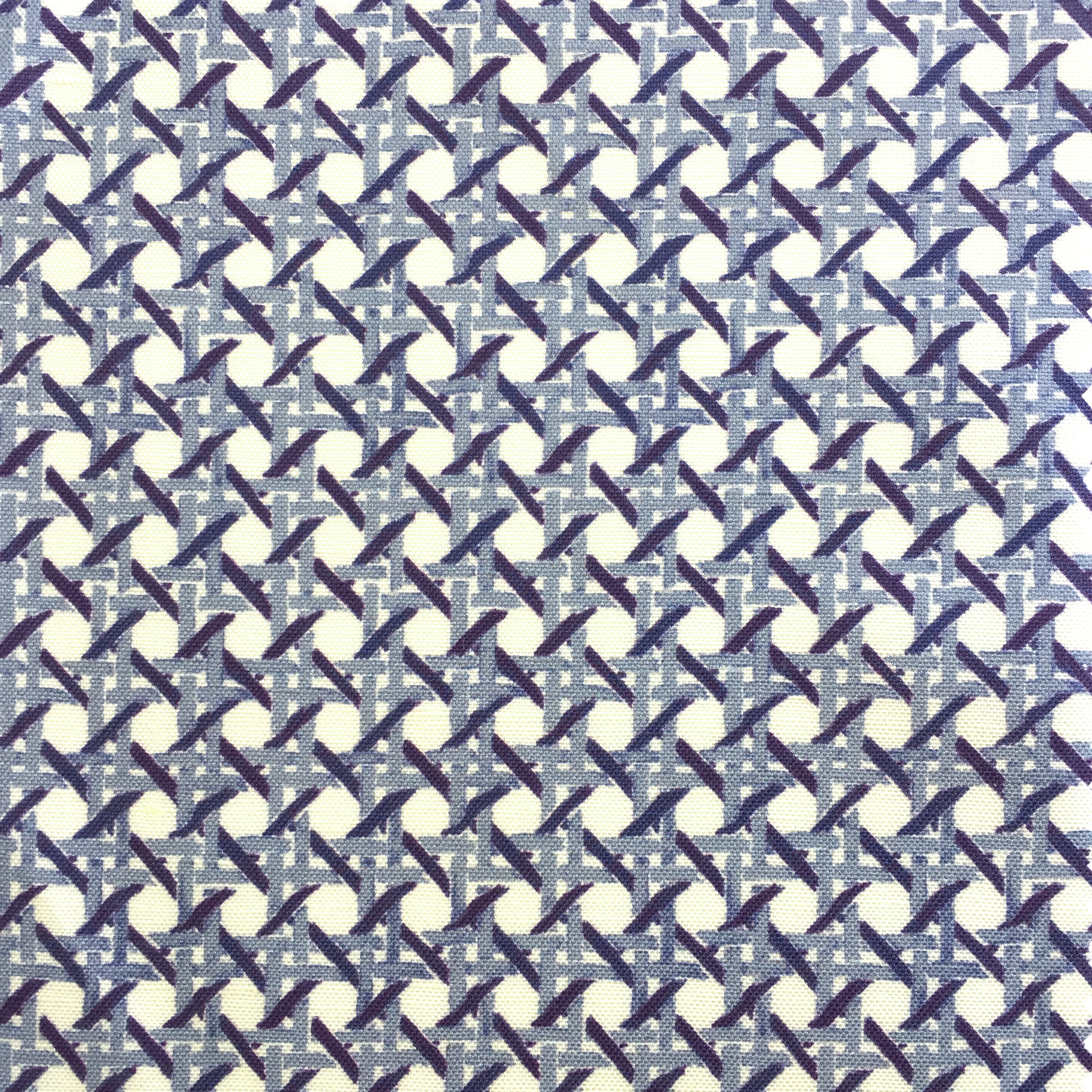 MINI Cane Print in BLUE  PALM SPRINGS COLLECTION