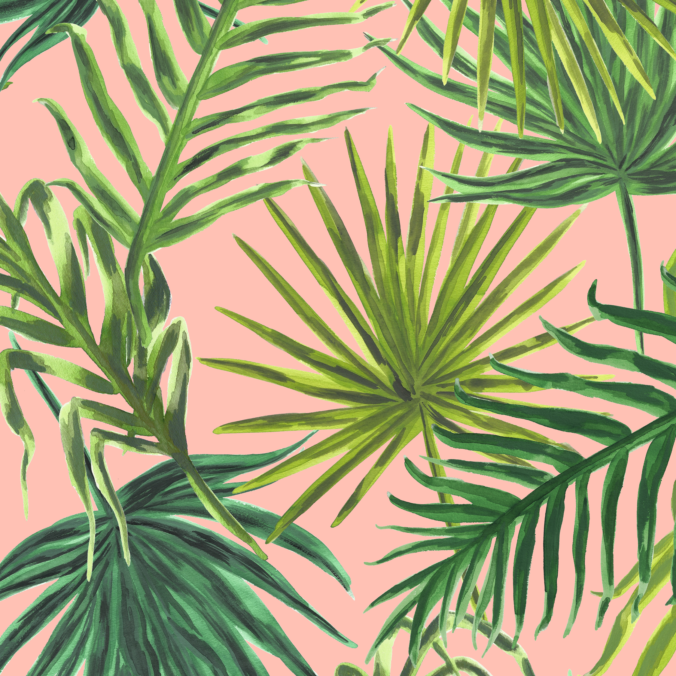 PALMS Print in PINK  PALM SPRINGS COLLECTION