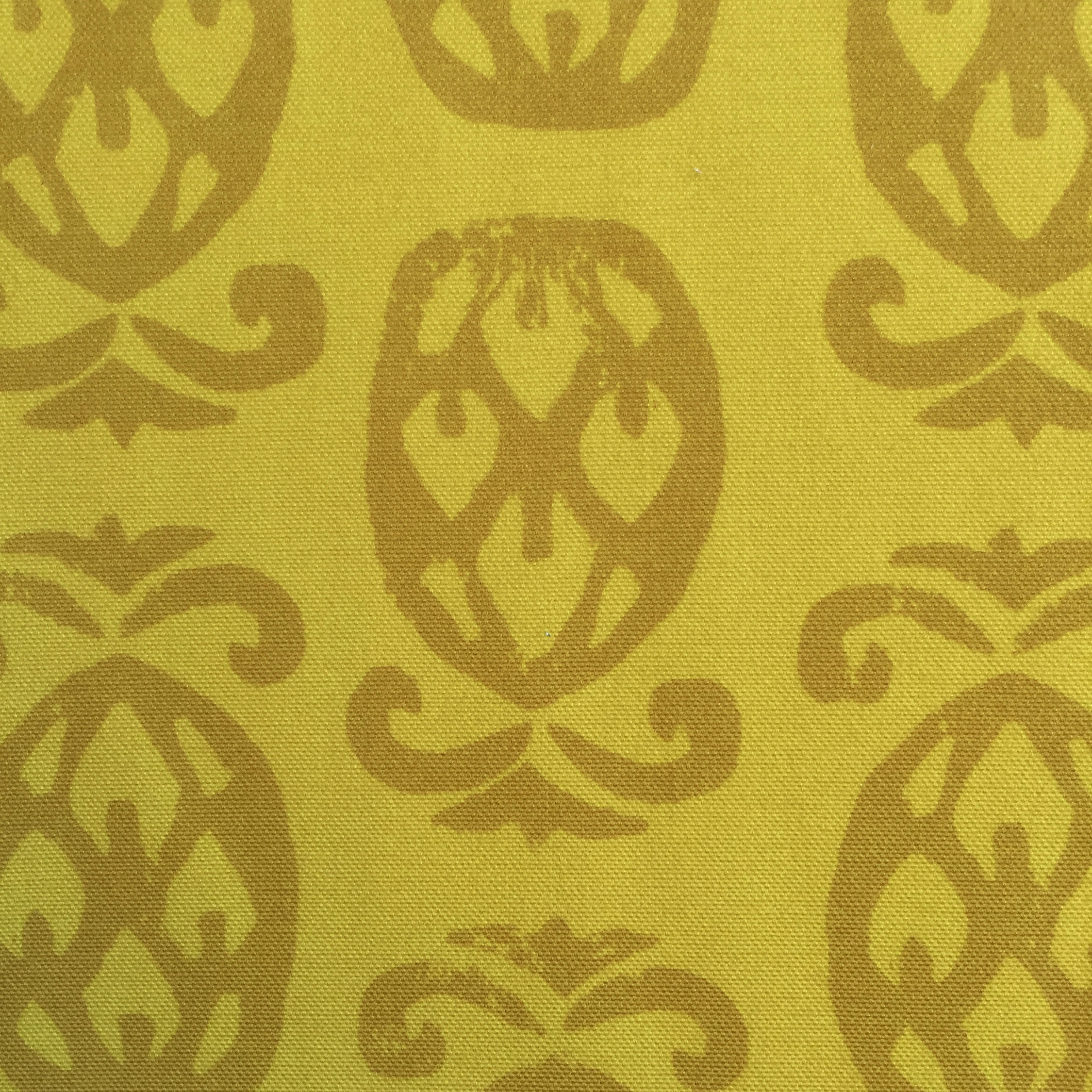 Pineapples in CHARTREUSE  PALM SPRINGS COLLECTION