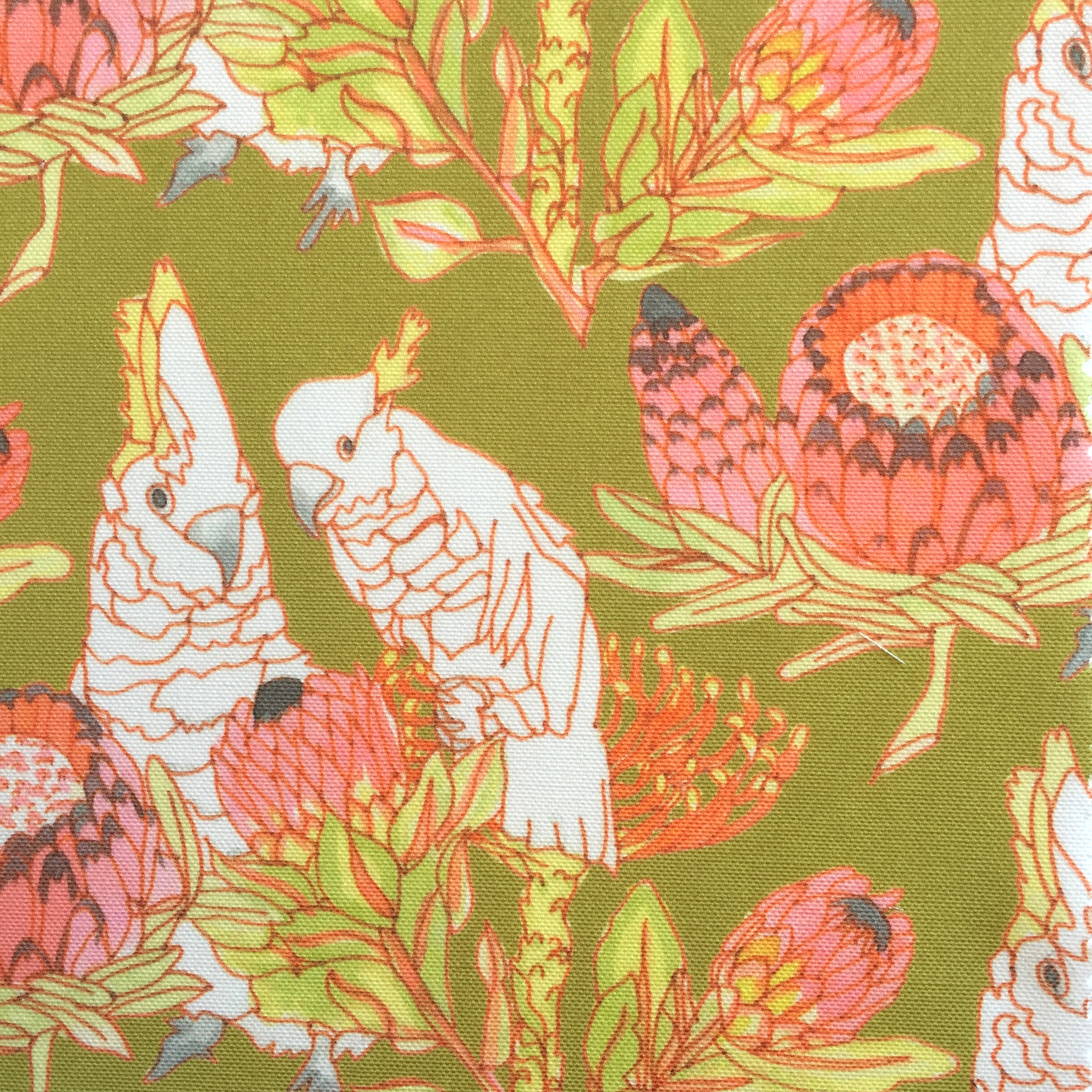 Parrots and Proteas in CHARTREUSE  PALM SPRINGS COLLECTION