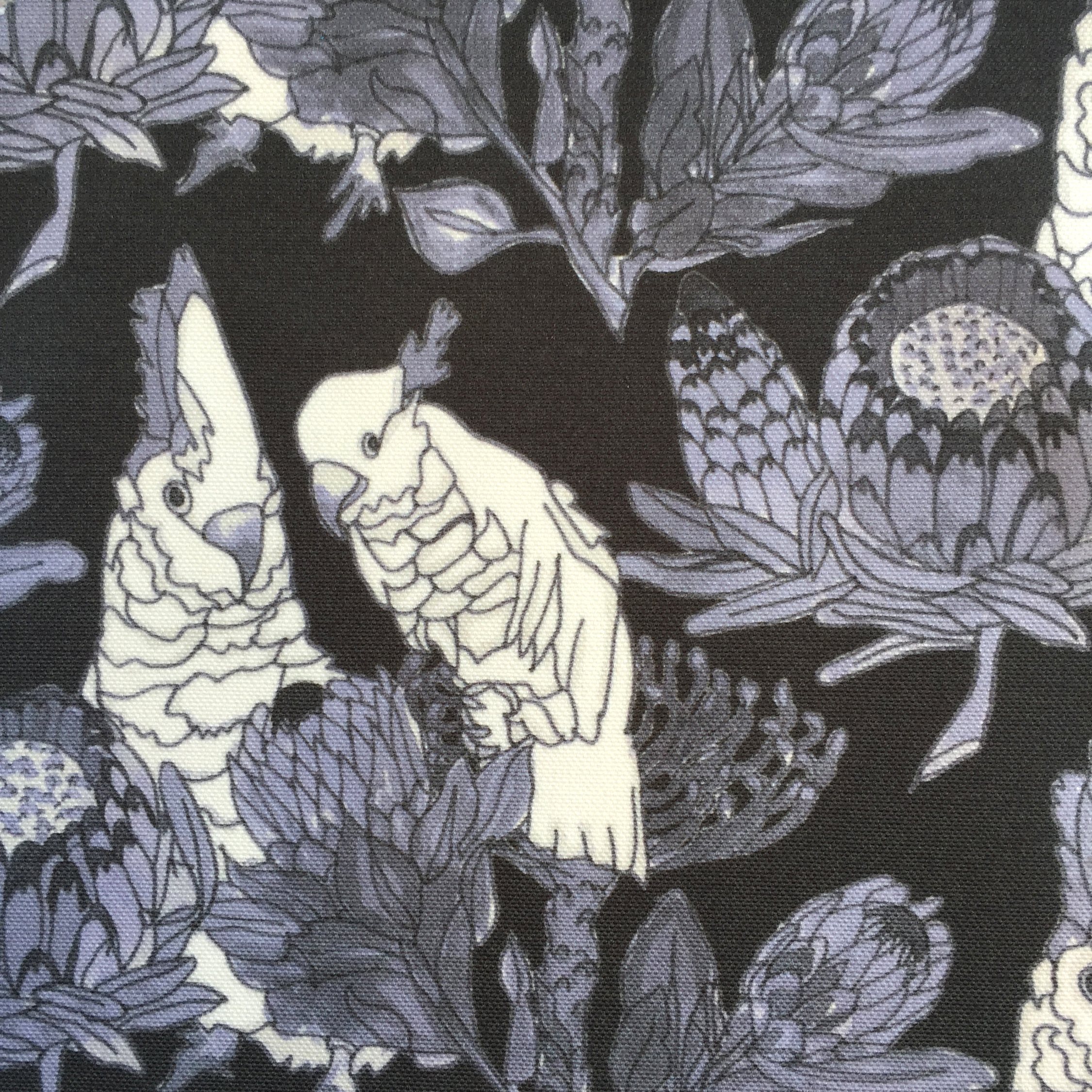 Parrots and Proteas in NAVY  PALM SPRINGS COLLECTION