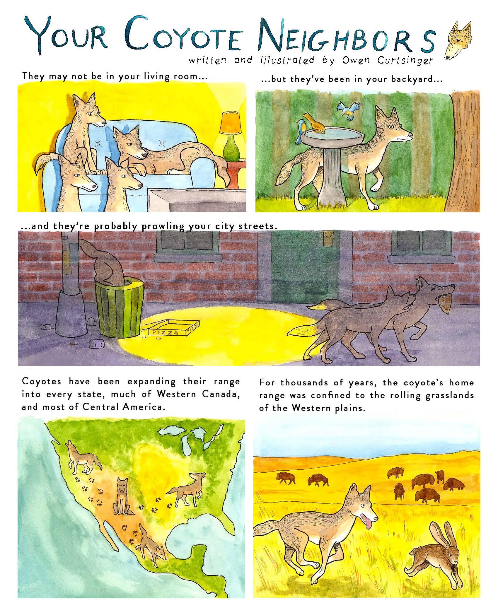 Illustoria Coyote Comic_Page_1.jpg
