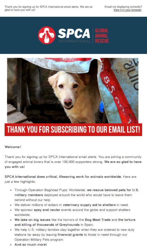 SPCA International Welcome Email