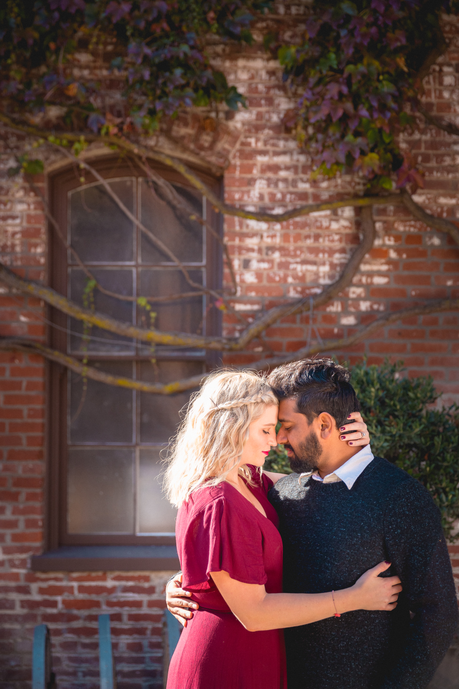 2018.12.03_Ashir-and-Emily-Engagement-Photography-@heymikefrancis-napa-valley-wedding-sacremento-california-heyfrancis-mikefrancis-.jpg