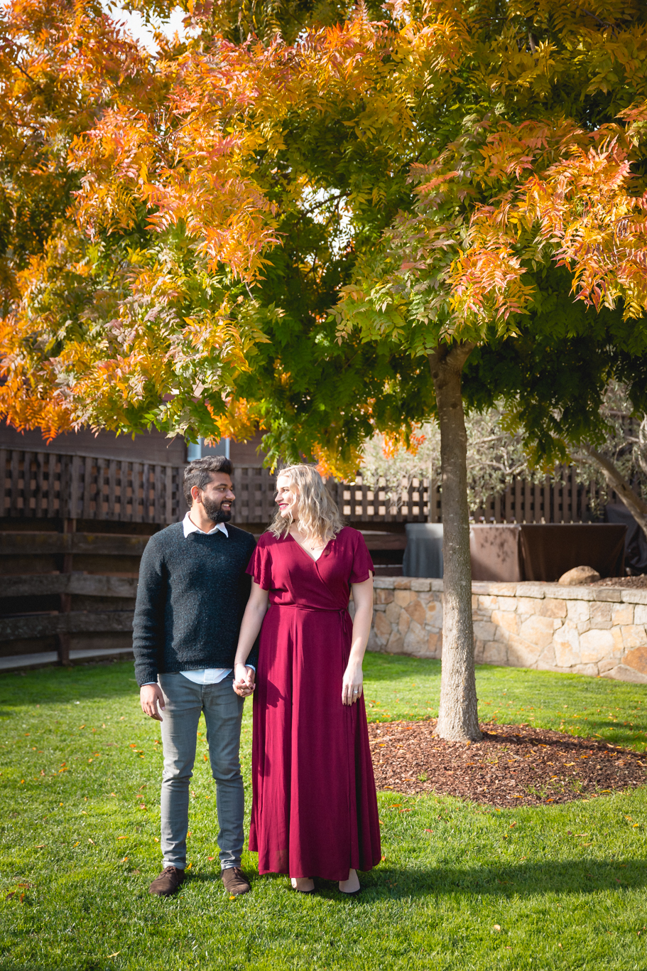 2018.12.03_Ashir-and-Emily-Engagement-Photography-@heymikefrancis-napa-valley-wedding-sacremento-california-heyfrancis-mikefrancis-7529.jpg