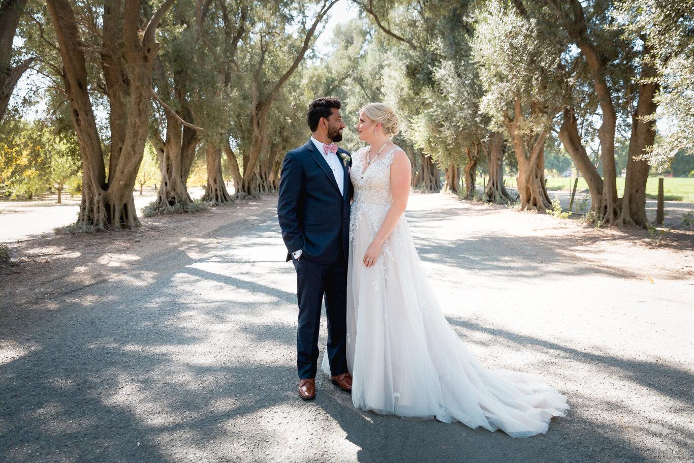 2019.08.24_Emily-Ashir-Wedding-at-the-Maples-5264.jpg