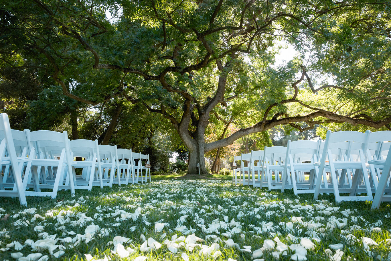 2019.08.24_Emily-Ashir-Wedding-at-the-Maples-5635.jpg