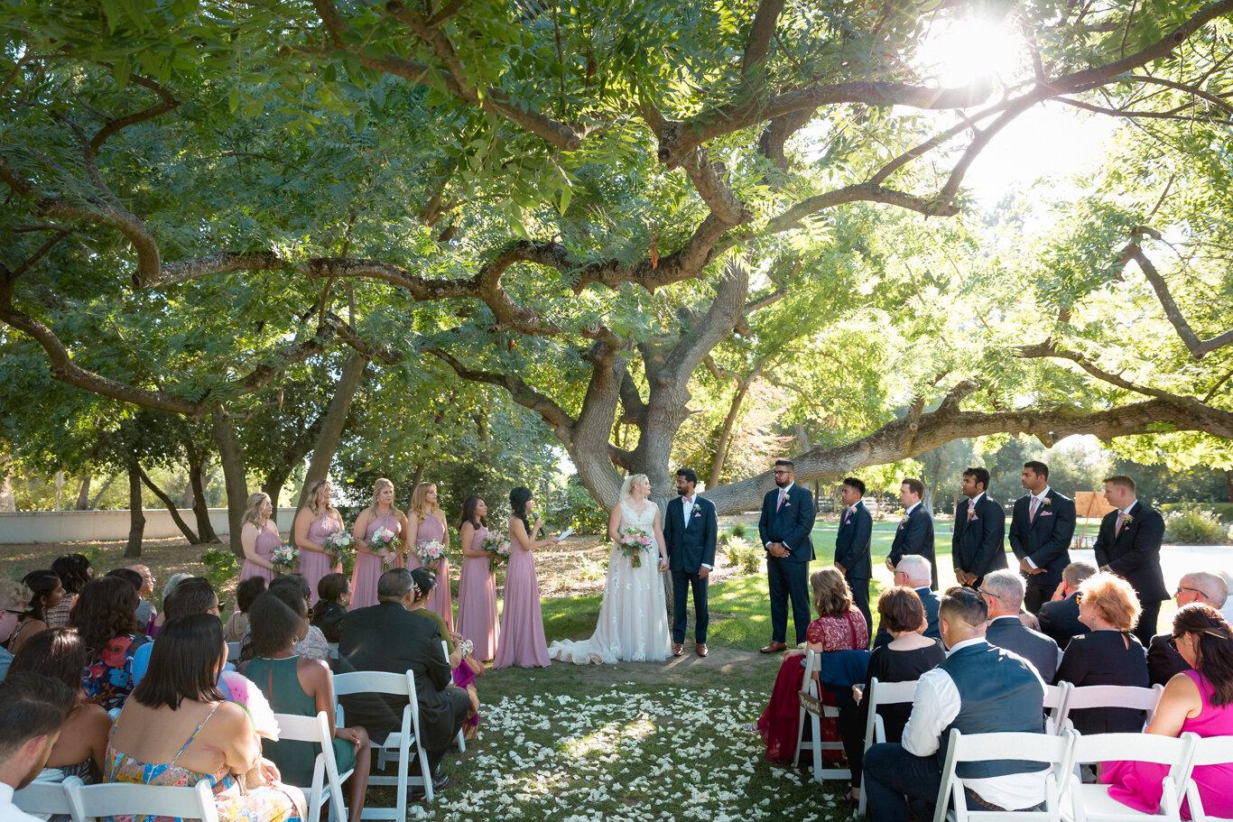 2019.08.24_Emily-Ashir-Wedding-at-the-Maples-5844.jpg