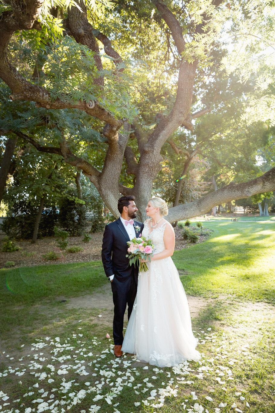2019.08.24_Emily-Ashir-Wedding-at-the-Maples-6066.jpg