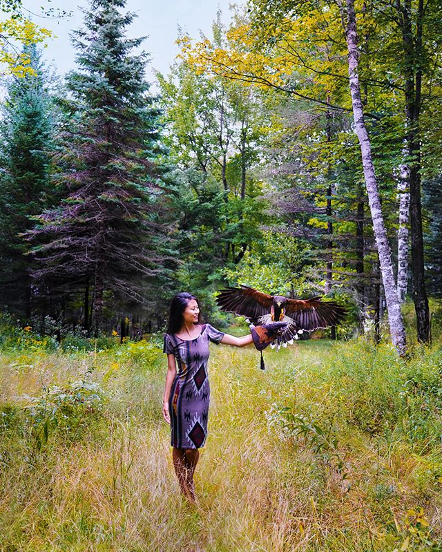 Meet my new pet, Phoenix the hawk. . Just kidding. He prefers hanging with Sarah, our guide and falconer with @tremblantactivities. She gave us an introduction to falconry, or using birds of prey like Phoenix to hunt. Having worked with him the past 4 years, she said even though they're BFFs, he's definitely in it for the meat and wouldn't make a very affectionate pet. . Fun fact: Falconry is used to prevent bird strikes, or when birds fly into plane windows or engines. Turns out having a falcon around scares off the other birds. Good to hear. 🤦🏻‍♀️✈️ 🦅 @monttremblant #tremblant