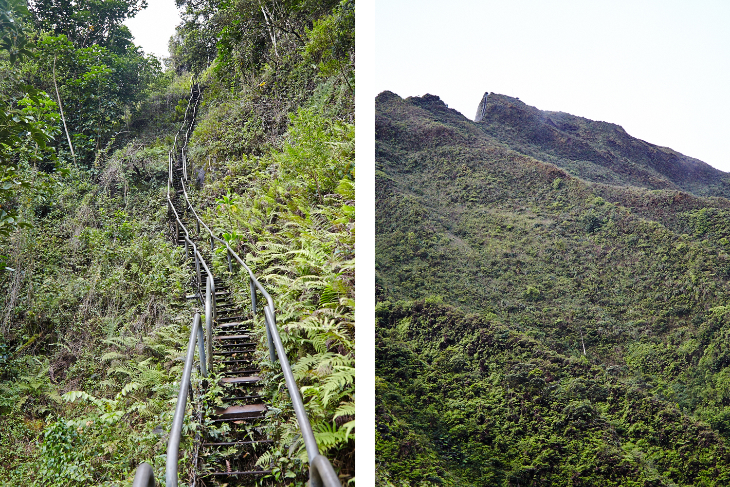 HaikuStairs10.jpg