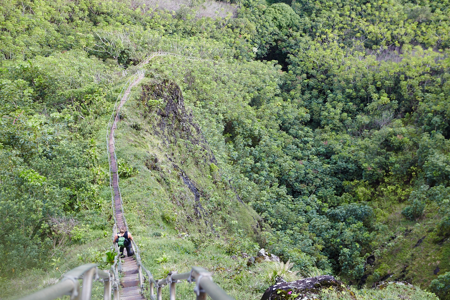 HaikuStairs12.jpg