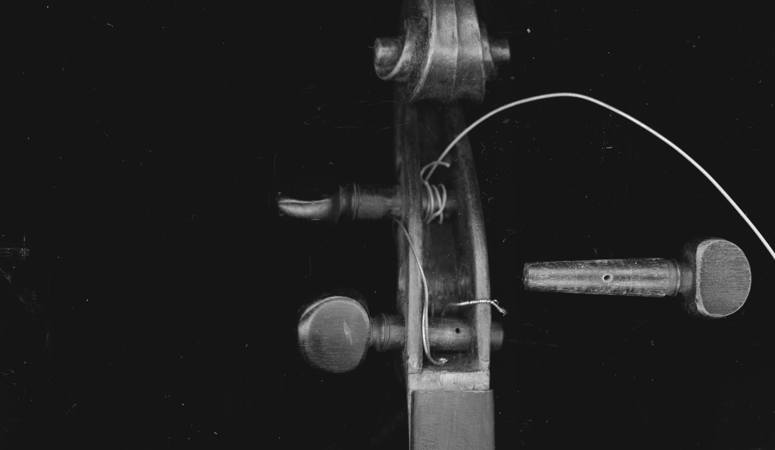 zielke_violinStudyII.jpg