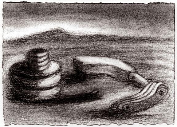 The Snail's Dilemma   2009