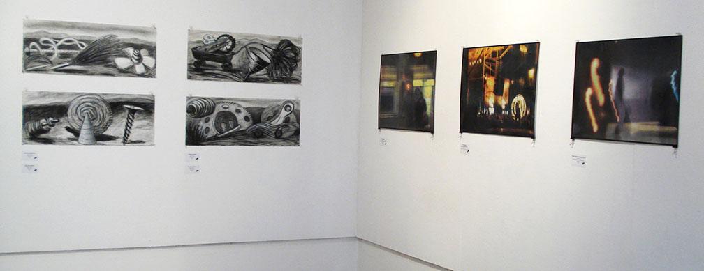 travel stories | shadow play: marilyn propp and david jones, 2008. Galeria AP, Universidad Veracruzana, Xalapa, Mexico