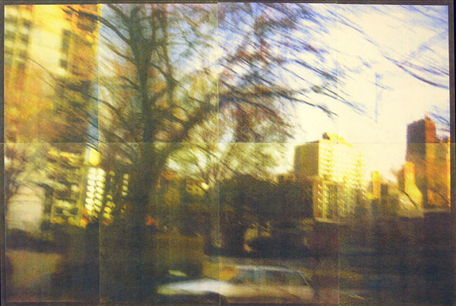 37 Views with Trees   2003