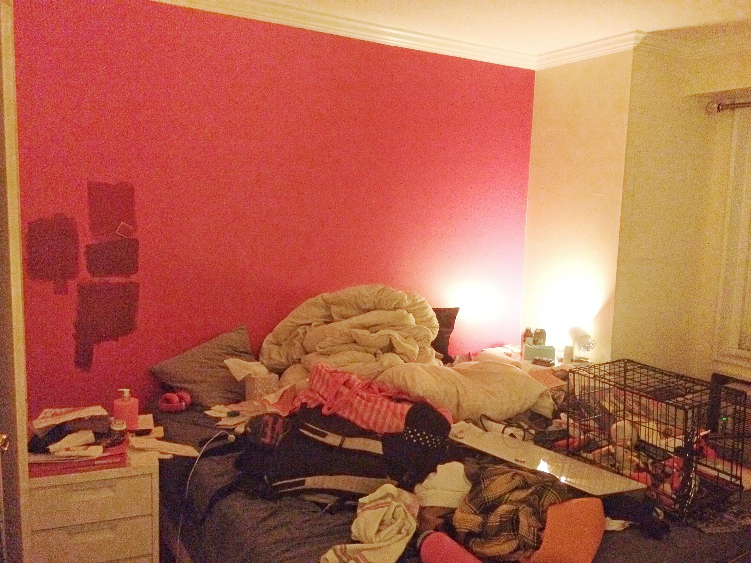 Bedroom before 1.jpeg