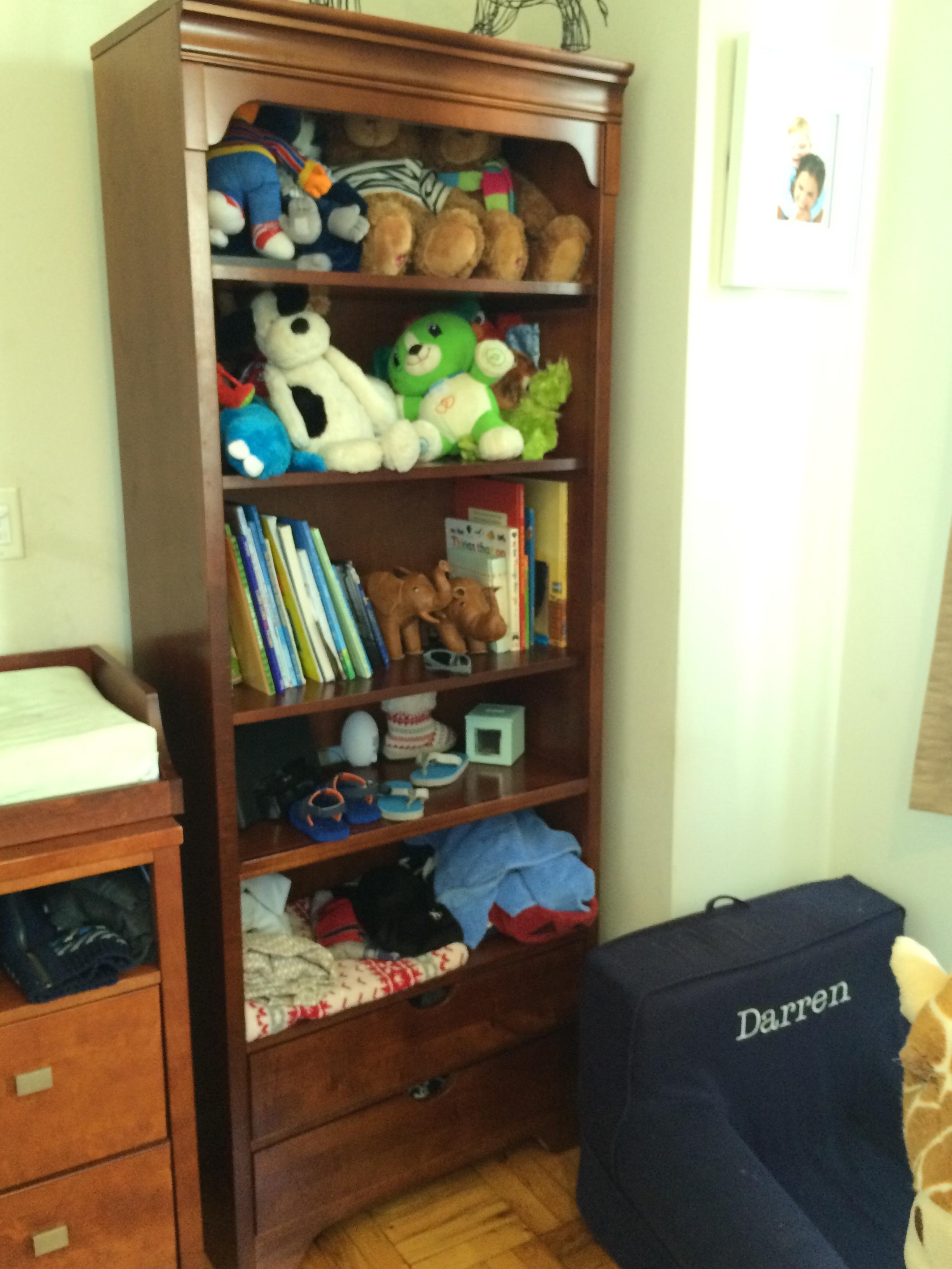 Lauren Bookcase Before.jpg