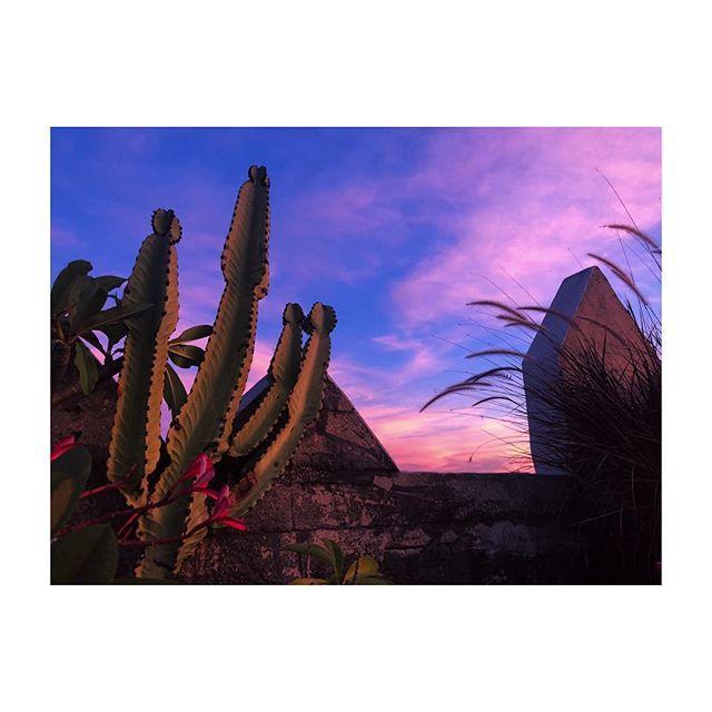 DTLA and pink skies 🇺🇸