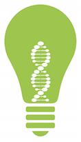 Light bulb Green.jpg