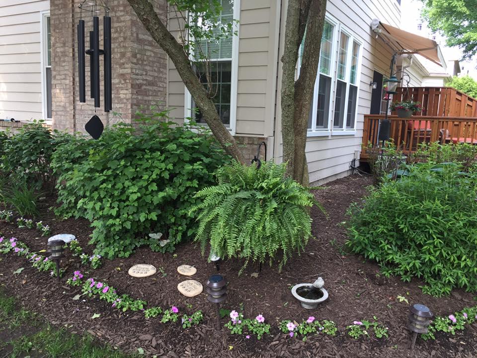 My zen garden sanctuary