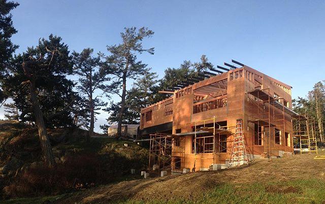 Progress (and great morning light) at the #bridgehouse