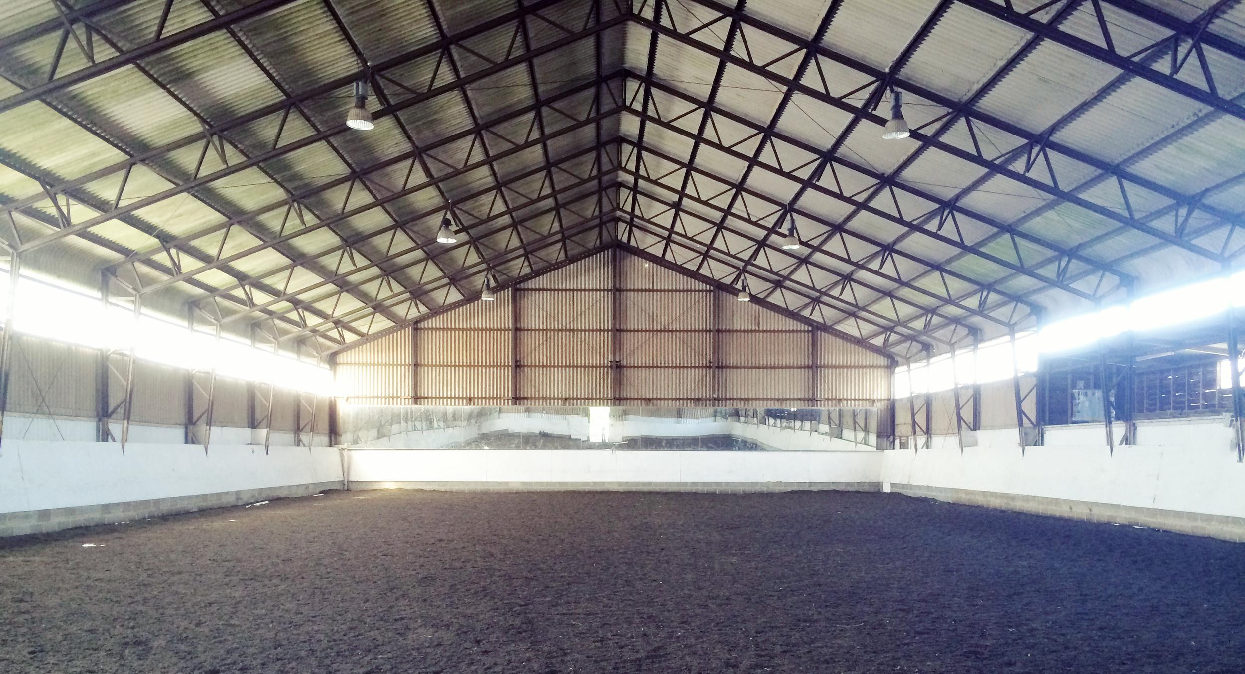 indoor-arena-london-dressage2.jpg