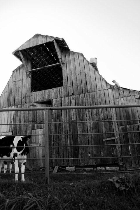Northwest Arkansas, Barn