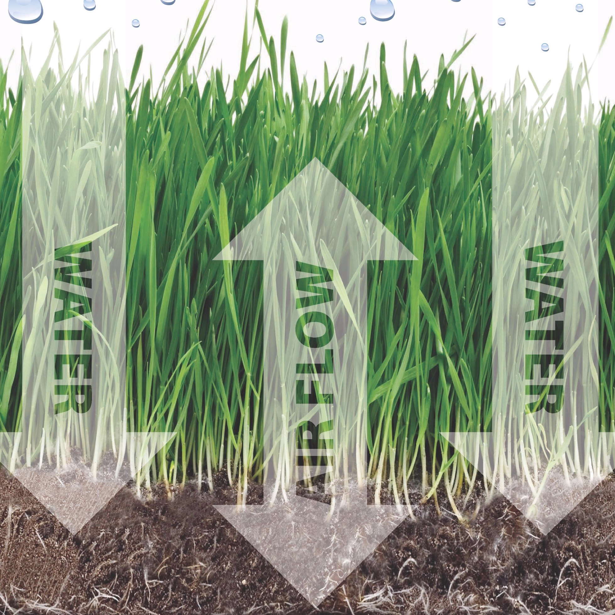 Aerate to liberate. - If you live in the south or southwest, increase absorption and percolation by treating your soil with exiGrow to liberate the hardened mineral salts. If you have more acidic soil, consider traditional core aeration.