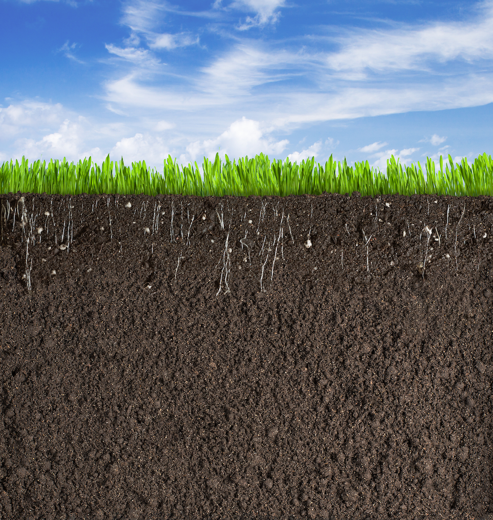 Starts with the Soil - All soil should contain about 5% organic material. HOP especially helps increase porosity in clay and retention in sandy soil.