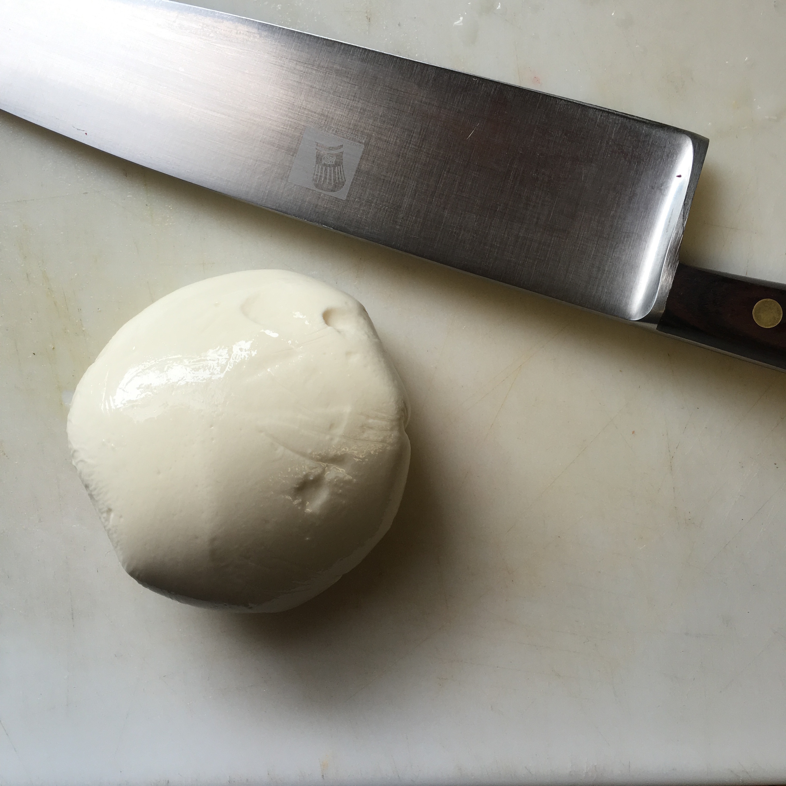 DEFINITELY NOT THE BEST MOZZARELLA I HAVE EVER HAD BUT I AM STILL PROUD OF IT!