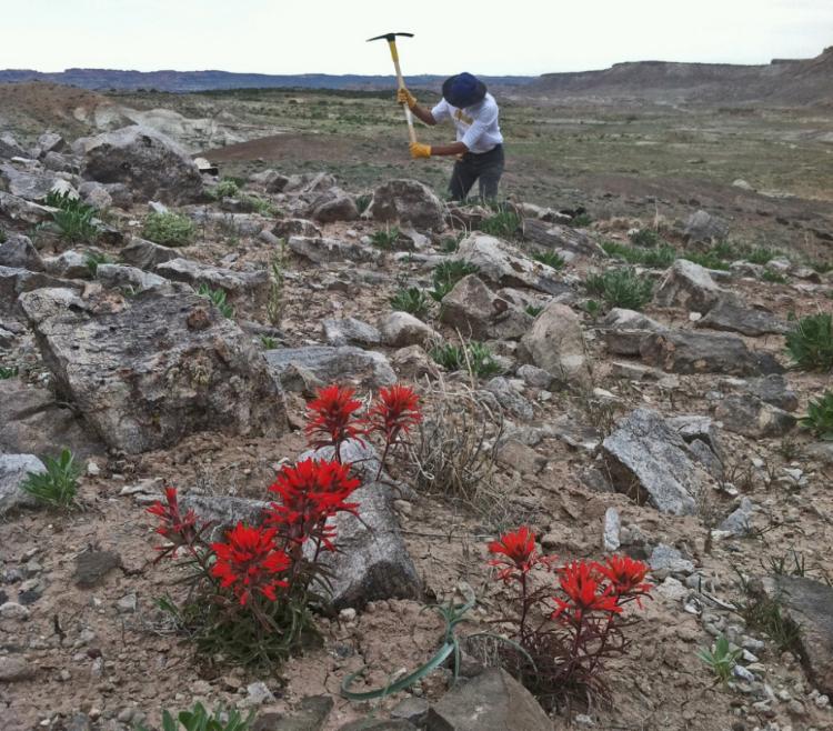 Digging for coprolite and colorfulnodules in Utah.