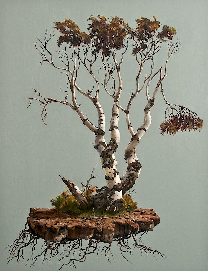Coastal Tree.jpg