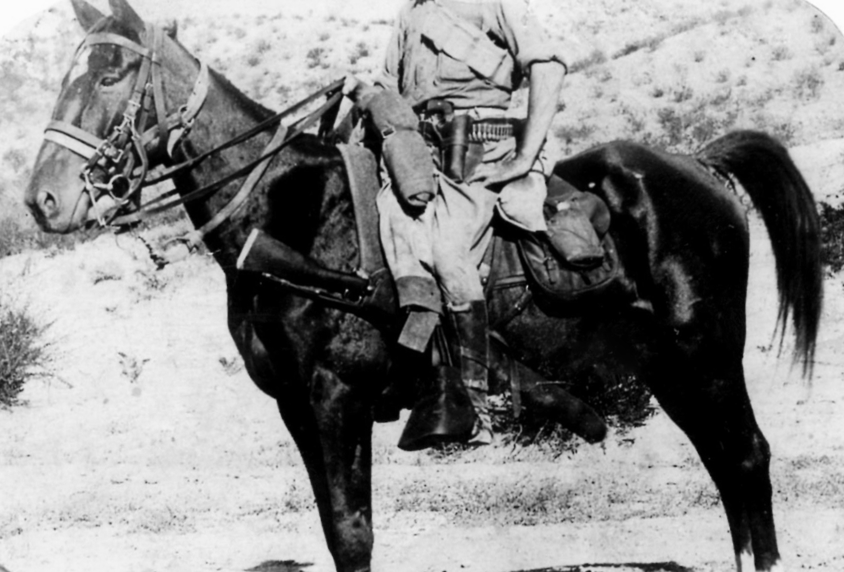 Photo of my Grandfather, Harry Szymborski on his horse, Red.  1916 during the Mexican War.