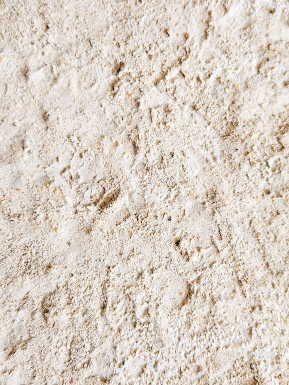 Sustainably Chic | Sustainable Fashion & Beauty Blog | Is Talc Safe? | What is Talc?.jpg