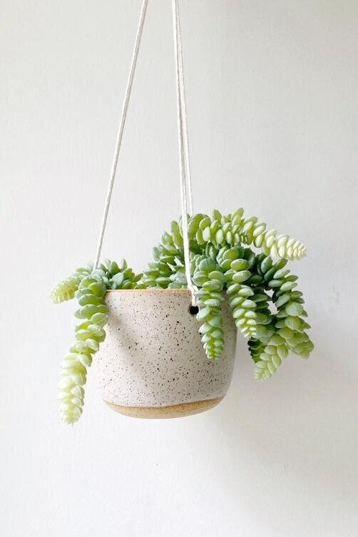 Sustainably Chic | Sustainable Fashion & Lifestyle Blog | Best Gifts for Plant Lovers | Handing Planter from Made Trade.jpg
