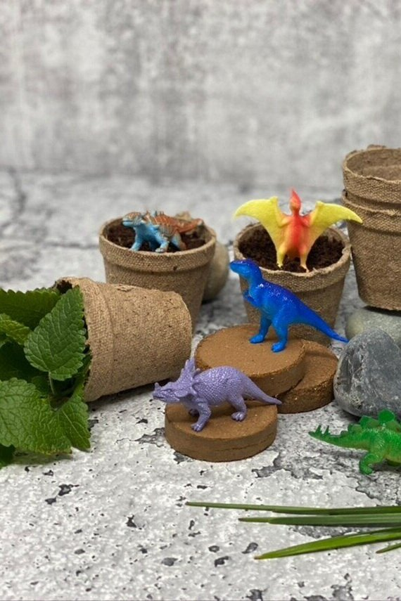 Sustainably Chic | Sustainable Fashion & Lifestyle Blog | Best Sustainable Gifts for Kids | Dinosaur Herb Garden from Etsy.jpg