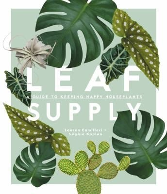 Sustainably Chic | Sustainable Fashion & Lifestyle Blog | A Guide to Keeping Happy House Plants from Better World Books.jpg
