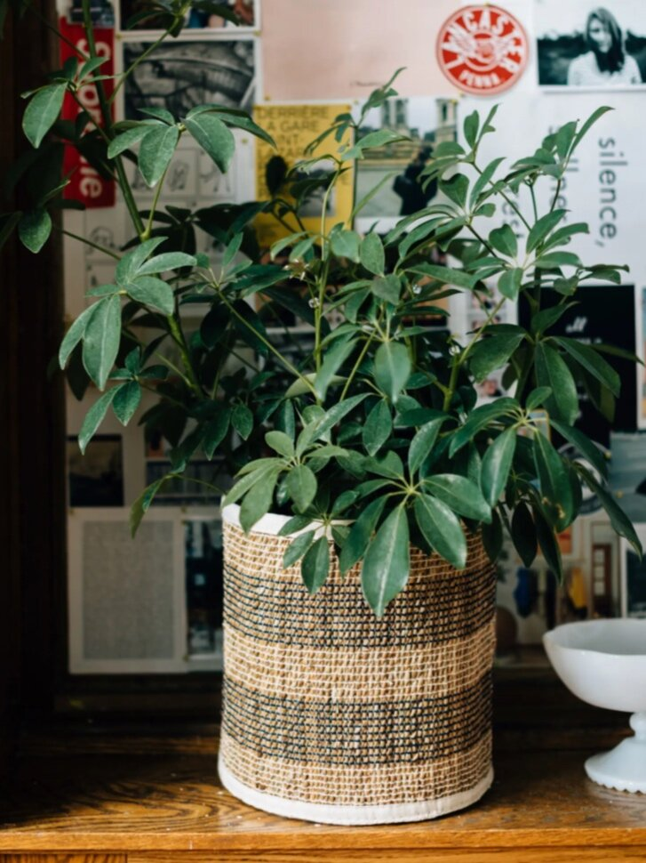 Sustainably Chic | Sustainable Fashion & Lifestyle Blog | The Best Sustainable Baskets for Eco-Friendly Storage | Ten Thousand Villages.png