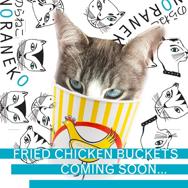 coming soon 🐓 ...#chickenbucket #thebestfriedchicken #friedchicken #getabucket #yourfavoritekaraage #murphylikeschicken