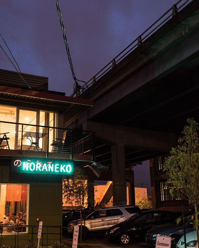 What's your plan tonight? 🌚 #ramenfordinner #pdxrestaurants #ramen 📷 @dinaravila #underthebridge #pdxwaterfront ... almost, 1 block away 🐒