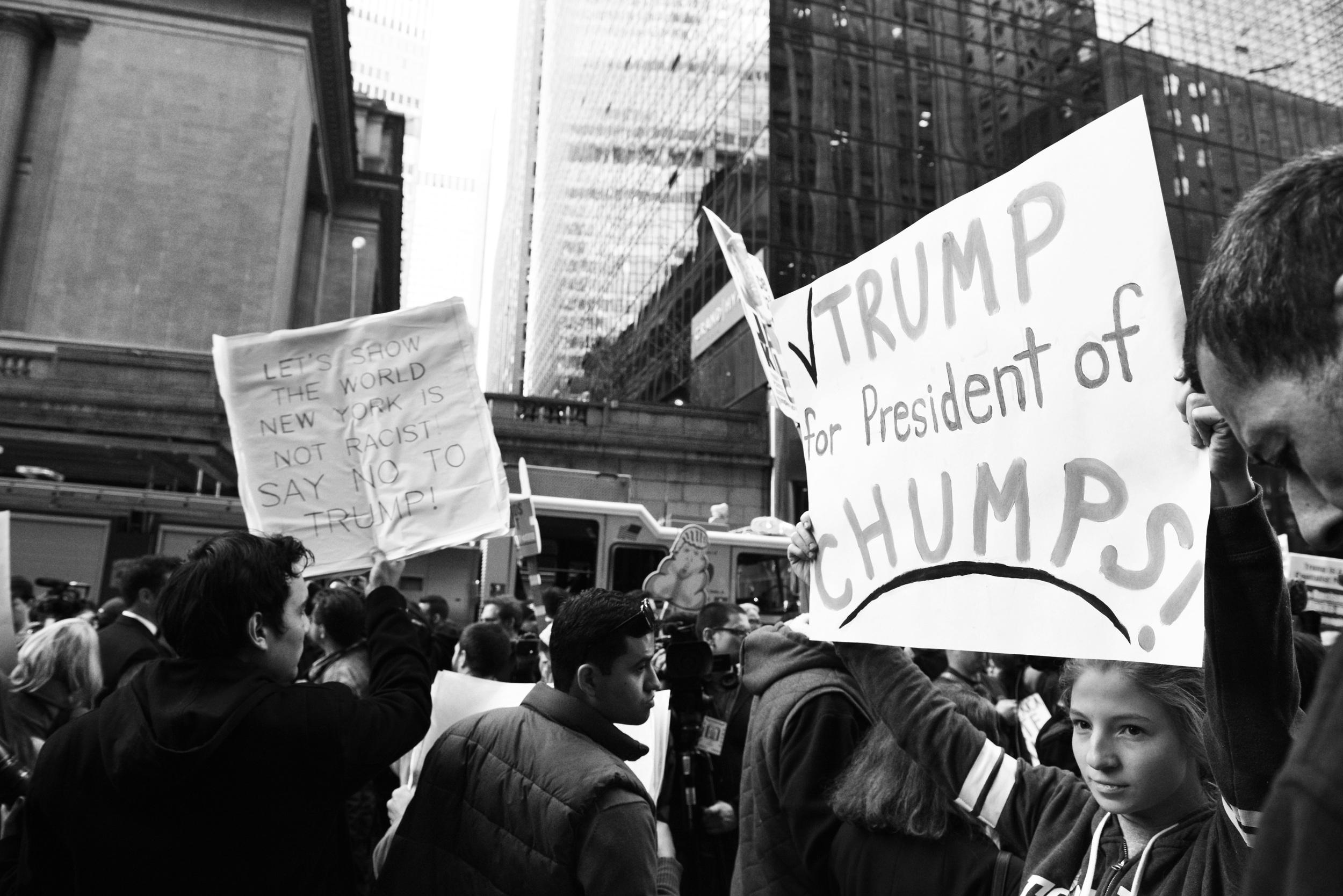 dump_trump_35.jpg