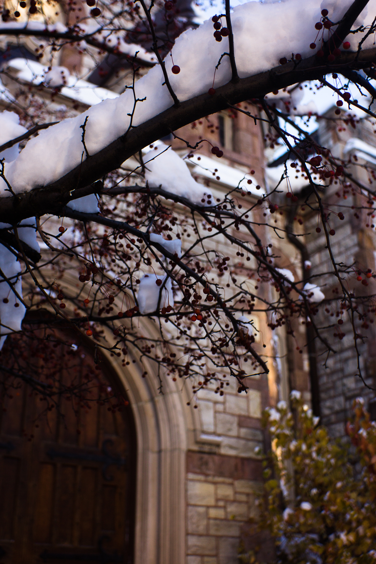 Nov 22 Downtown Flint Life photos Web-22.jpg
