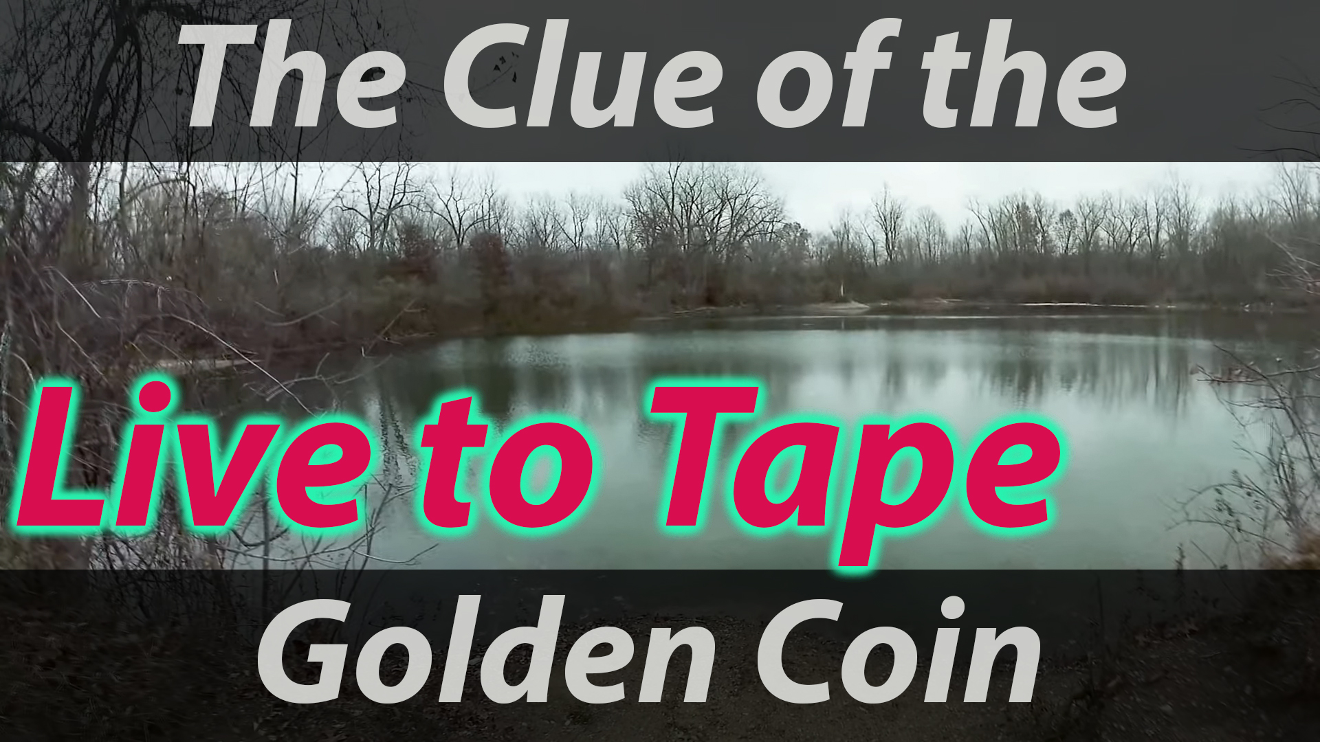 Clue of the Golden Coin 013.jpg