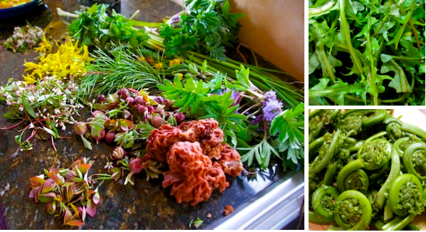 Cooking with foraged ingredients is healthful,cost effective and delicious.