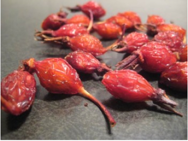 Rose hips naturally freeze dried by winter