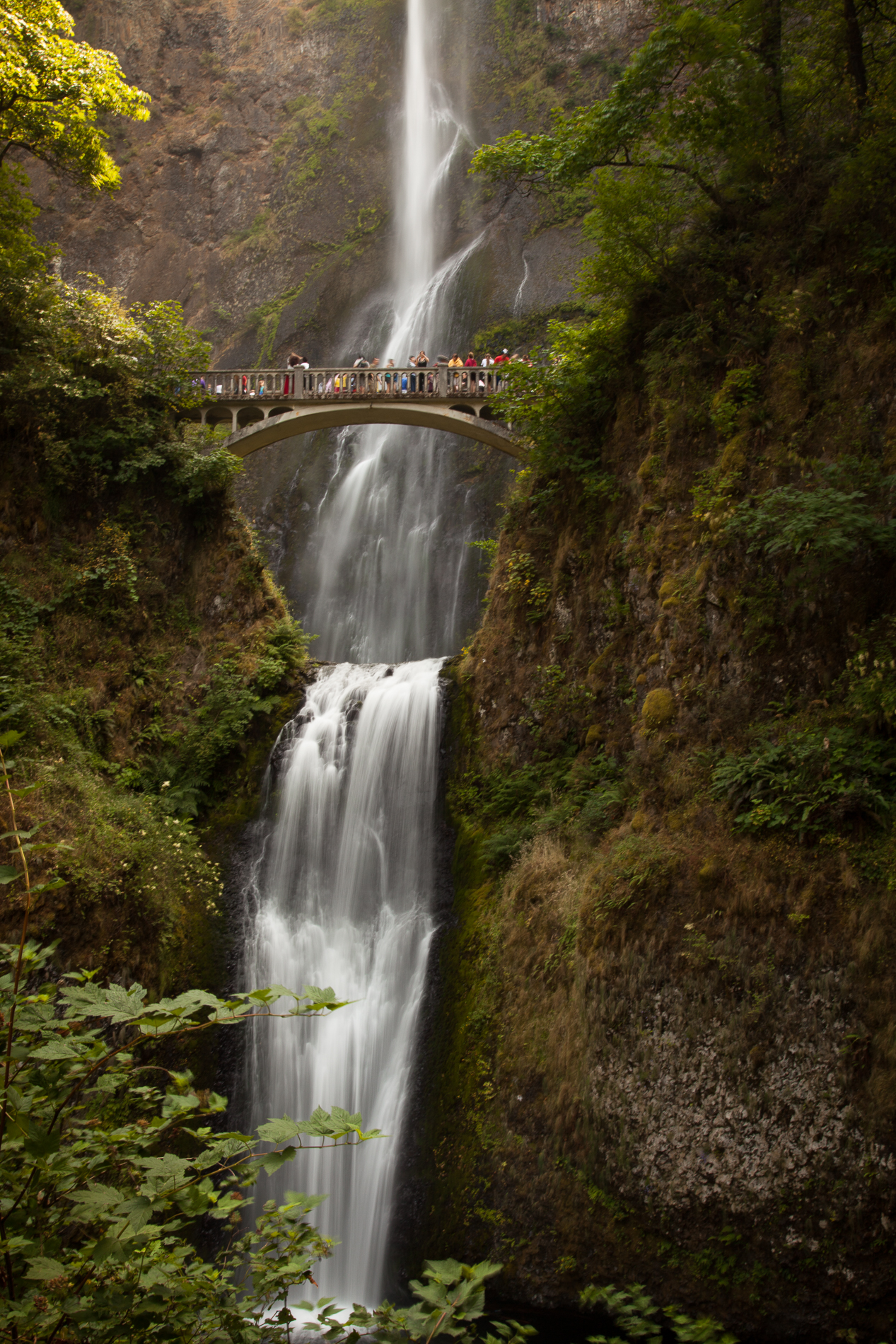 20120807_Oregon_2937.jpg