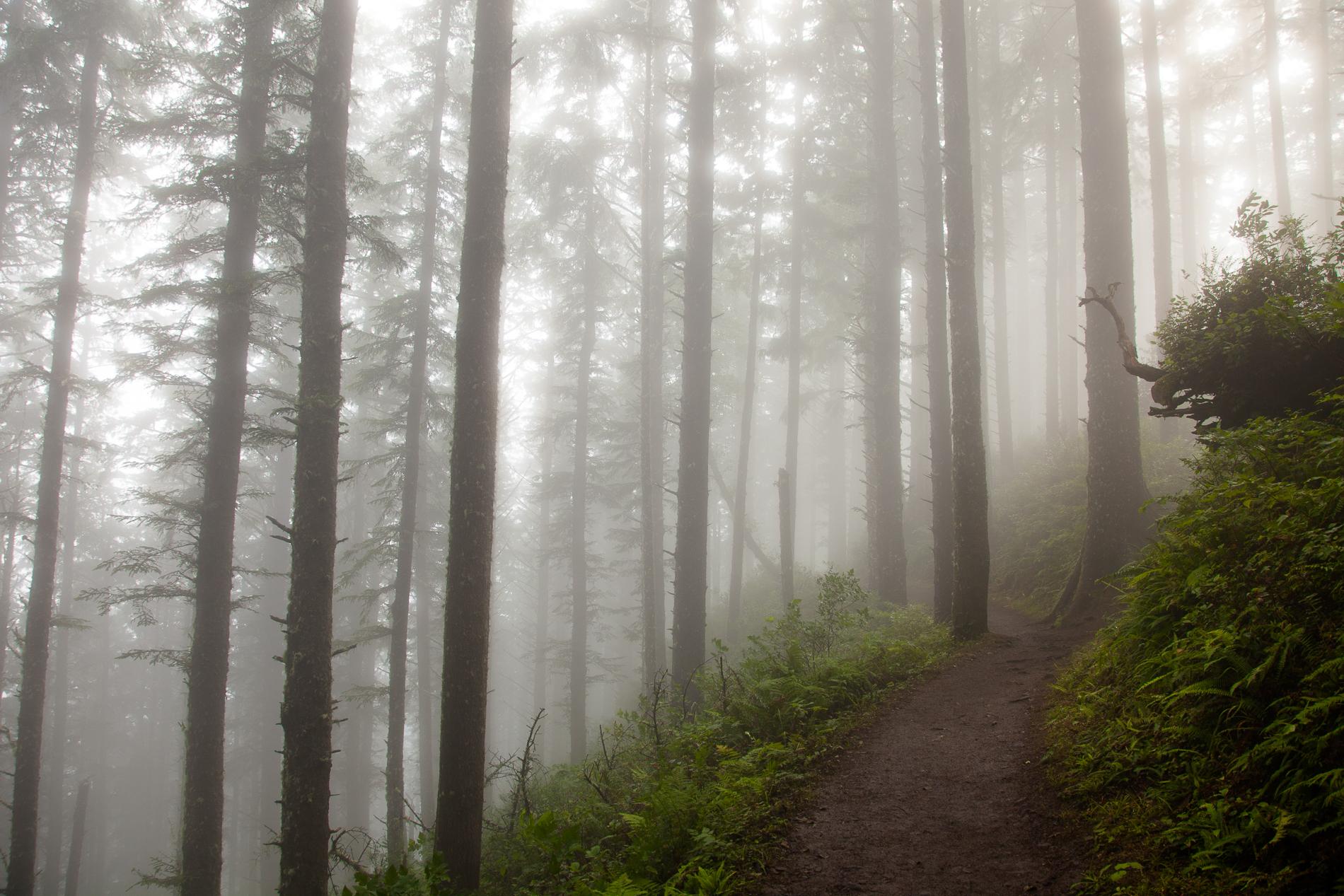 20120805_Oregon_2815.jpg